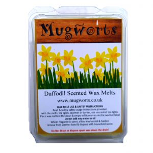 Daffodil Scented Melts